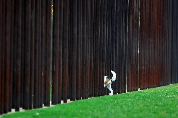 (c) Britta Pedersen/AFP/Getty Images